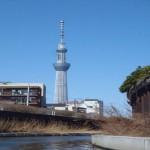 東京水路半日カヤックツアー